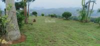 bán nhà đất nghỉ dưng siêu đẹp đất nhà vườn sinh thái