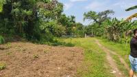 cần bán 7400m2 đất có ao cạnh suối tại hợp hòa lương sơn hòa bình