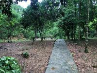 bán khuôn viên nhà vườn 3400m2 vị trí đẹp tiện đường có nhà sàn cư yên lương sơn hoà bình
