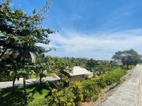 bán đất trần phú bãi dâu vị trí đẹp giá rẻ hơn trong hẻm lh 0945412112