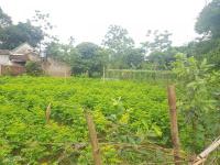 bán 2500m2 lô góc 2 mặt tiền đất trang trại nhà vườn tại nhuận trạch lương sơn hòa bình
