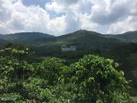 bán đất nghỉ dưng diện tích 11780m2 view đẹp tp bảo lộc