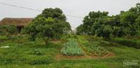 chuyển nhượng trang trại phù hợp làm khu nghỉ dưng viện dưng lão hoặc chăn nuôi quy lớn mô lớn