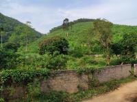 195 tỷ 5850m2 đất nhà vườn sát resort legacy hill 60ha view cánh đồng ao suối về hn 48km