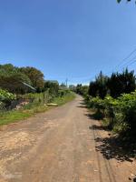 2 tỷ 9 gia đình cần bán 1600m2 đất chuyển đổi xây dựng tại xã xuân trường đà lạt 0936905939