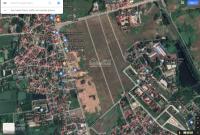 Cần mua đất ở (dịch vụ) tại Thanh Trù, Đông Đạo, Lai Sơn