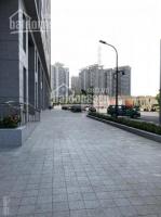 cho thuê shophouse dự án saigon south residence mặt tiền đường lớn giá 30trth 0901319986
