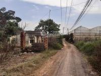bán 21 hecta nhà đất cách đường quang trung 100m tà nùng tp đà lạt