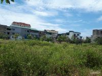 bán đất đấu giá 200m2 đất xã thạch đài tp hà tĩnh khởi điểm 800 triệu