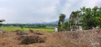 bán siêu phẩm 4040m2 có 400m2 thổ cư còn lại là đất trồng cây lâu năm