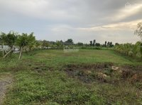 bán đất vườn ngay gần kdc mặt tiền đường lớn xã bình mỹ củ chi