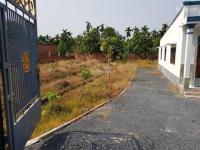 bán nhà đất thổ cư dt 15x28m shr hướng đông đường bùi công trừng hóc môn giá 6 tỷ lh 0967813059