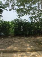 bán đất thổ xóm ngò an thượng hoài đức dt 273m2 sổ thực tế 310m2 phân được 6 lô