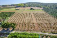 bán đất trang trại cách biển bắc bình 8km giá chỉ 408 triệu6287m2 giá rẻ hơn thị trường