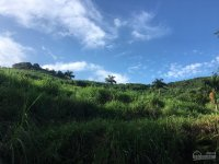 nhượng lại 100ha đất rừng sản xuất thích hợp khu du lịch nghỉ dưng lương sơn hòa bình