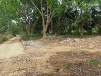 bán gấp lô đất đẹp 5800m2 có 600m2 đất thổ cư tại xã cư yên