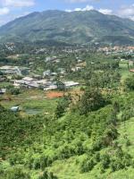 6 sào 3 đất view đồi nhìn toàn cảnh tp bảo lộc giá 15 tỷ đường oto vào tận nhà