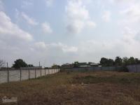 bán đất xây kho 1000m2 thổ cư nguyễn đình kiên bình chánh đường xe container