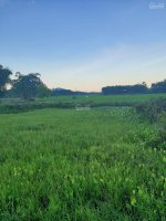 cần bán 1312m2 đất vườn có 200m2 đất ở giá 2 tỷ hòa phong đà nng lh 0932 43 73 18