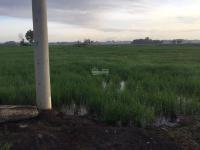 bán đất xã vĩnh thanh mặt tiền đường ô tô tới đất cách quận 2 10km tờ 48 thửa 98 tờ 48 thửa 97