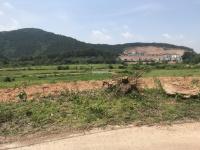 bán 3 nghìn m2 đất vị trí đất đẹp thích hợp xây khu nghỉ dưng và homestay