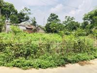 cần bán 2500m2 đất nhà vườn thổ cư 400m2 lô góc 2 mặt tiền đường nhuận trạch lương sơn hòa bình