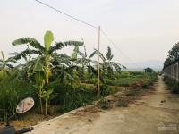 bán đất lâm sơn hòa bình mặt đường view cực đẹp