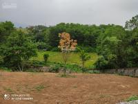 bán gấp lô đất thổ cư tại xã cư yên lương sơn dt 1580m2 liên hệ 0984538309