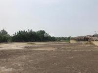 bán đất mặt tiền đường lý nhơn an thới đông cần giờ