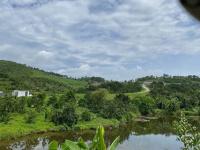 trang trại 10ha view cực xinh ở lương sơn giá chỉ 1x tỷ lh 0943346523