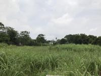 Cần mua đất có sổ đỏ ở các xã Ba Trại, Cẩm Lĩnh, Minh Quang, Ba Vì, Tản Lĩnh, Vân Hoà, Yên Bài