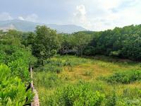 nhanh tay để hữu lô đất 2150m2 vị trí đắc địa views thoáng mát tại nhuận trạch lương sơn hb