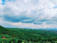 nhà chị dâu cần bán 879m2 đất view thung lũng ngay phan đình phùng rẽ vào giá bèo view siêu đẹp