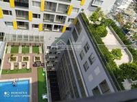 cho thuê căn studio 35m2 giá 8 triệutháng tại charmington la pointe q10 giá tốt mùa dịch