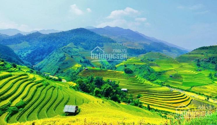 Bán đất tại đường Fansipan, Sa Pa, Lào Cai, 0936023588