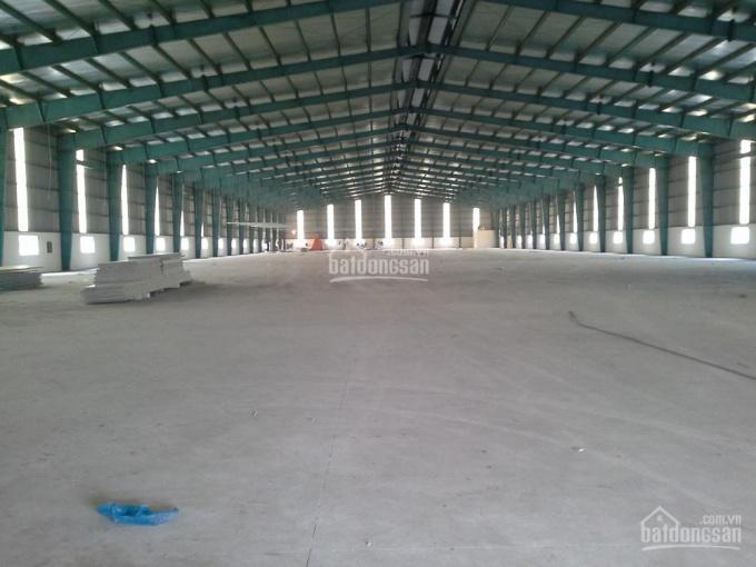 Cho thuê kho, xưởng mới 100% khu công nghiệp Cẩm Giàng, Hải Dương DT 500m2 đến 100.000m2