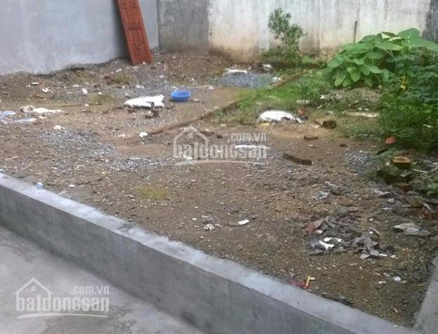 Chính chủ bán đất trong ngõ vũ tông phan, ô tô vào nhà. dt: 30m2, mt 3,6m