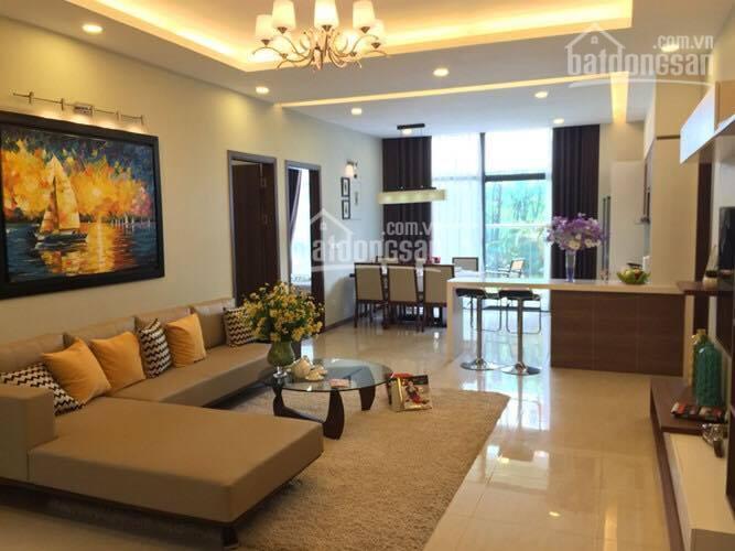 Cho thuê căn hộ cao cấp N04 Hoàng Đạo Thúy, Trung Hòa Nhân Chính, 2PN, 95m2, đồ cơ bản, 15 tr/th