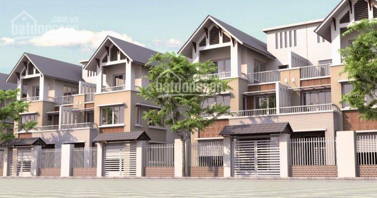 Cần tiền bán nhanh đất phân lô 90m2, (6x15m), vip Ngọc Chi, Vĩnh Ngọc. 0914899281