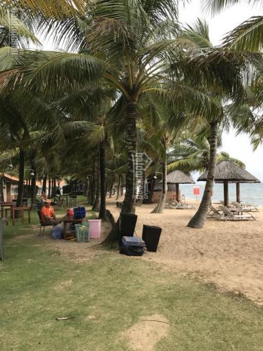 Bán resort 4 sao mặt tiền đường Trần Hưng Đạo, thị trấn Dương Đông, Phú Quốc