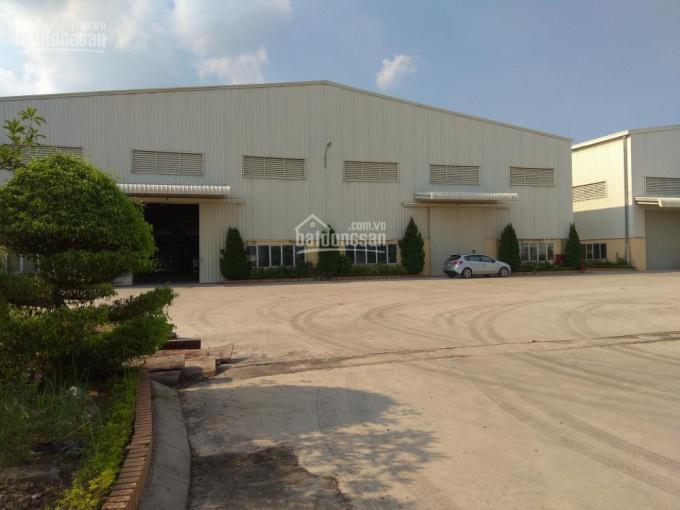 Cho thuê kho xưởng lô 2 KCN Bạch Hạc- Phú Thọ, 2000m2, 5000m2 và 8000m2 công ty Long Giang