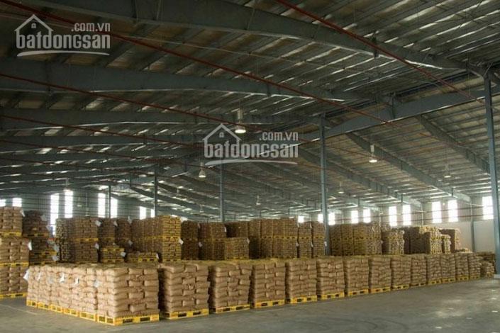 Cho thuê kho tại HCM: Bình Chánh, 100m - 200m - 500m - 1000m - 5000m2, giá tốt nhất