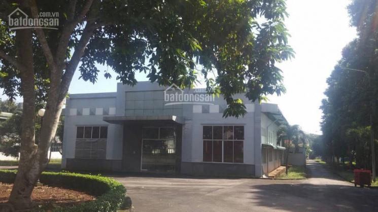 Cho thuê kho 19.000m tại TT Long Khánh Đồng Nai giá 1usd/m, kho mới, có nhà văn phòng