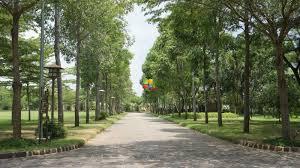Cho thuê shophouse vinhomes gardenia cạnh chung cư dtsd 500m2 giá 50tr (lh: 01234 76 86 76)