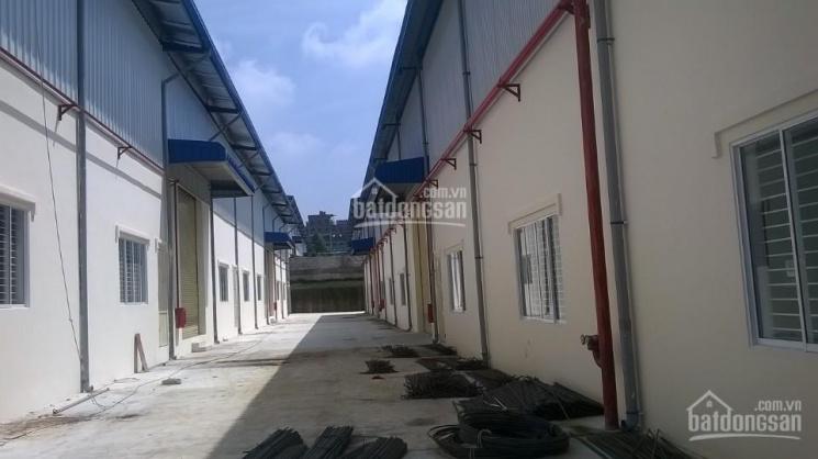 Cho thuê kho xưởng trong khu công nghiệp Mỹ Phước 3 - TX Bến Cát