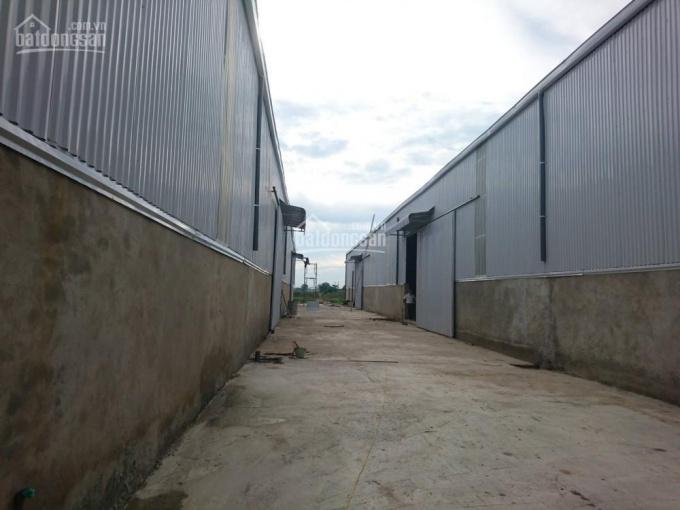 Chính chủ cho thuê kho mới xây tại Nguyên Khê, Đông Anh, container vào thoải mái