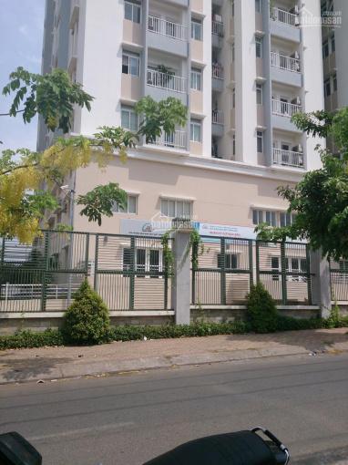 Bán 8 căn hộ TDH Trường Thọ, sổ hồng, giá TT: 2.2 tỷ/căn 82m2, LH 0917 28 80 80 ảnh 0