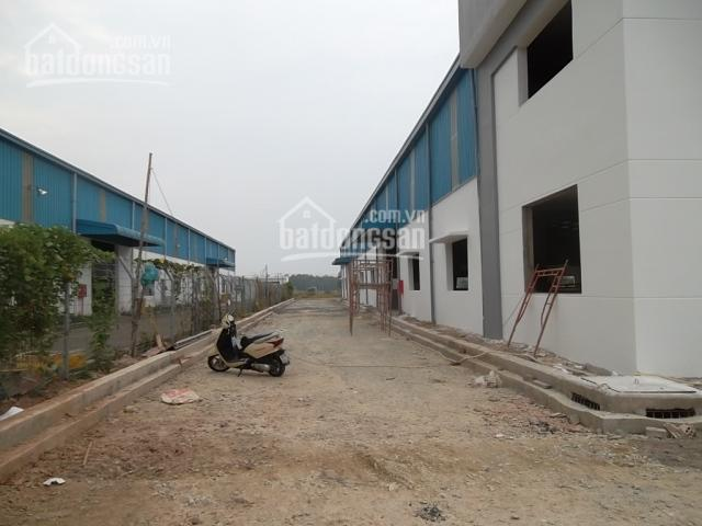 Cho thuê nhà xưởng 12000m2, Trần Đại Nghĩa, Bình Chánh, TP. HCM