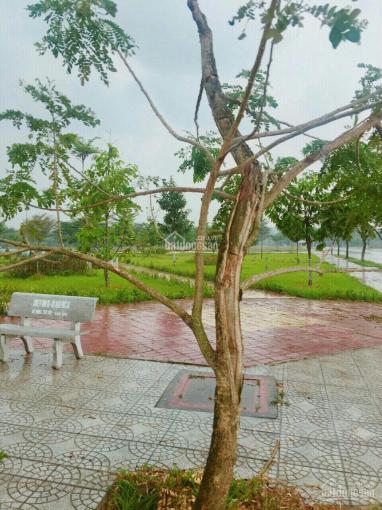 Đất nền Hoàng Hữu Nam gần bến xe Miền Đông 2. Gần KCN Q9, SHR, 2,5 tỷ/nền, 0938308683 ảnh 0