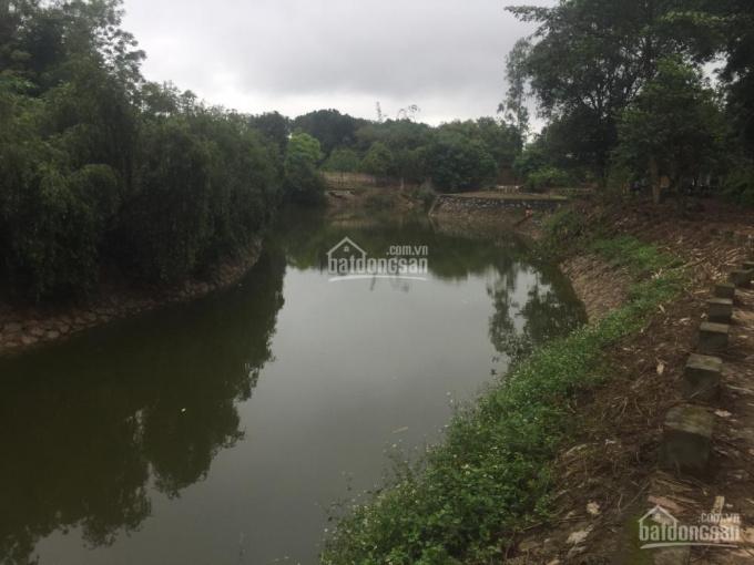 Cần bán 9000m2 đất trang trại khuôn viên hoàn thiện giá thanh lý tại Lương Sơn, Hòa Bình